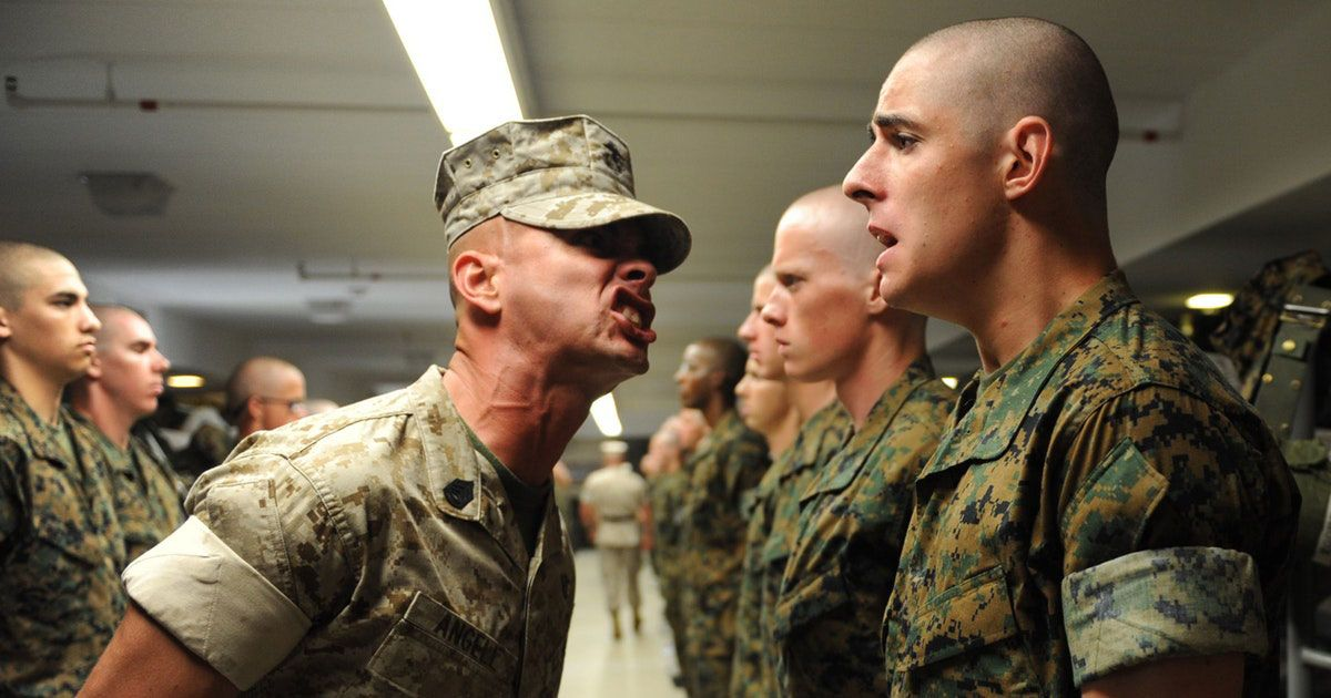 Formazione e addestramento - Immagine: 1